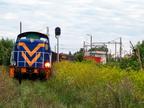 """SM42-2540 -- Lokomotywa SM42 DB Schenker ze składem do wyszkowskiej elektrociepłowni przedziera się przez zarośnięty wjazd na bocznicę """"Pole""""."""
