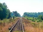 Pierwsze kilometry linii nr 34 -- Pierwsze kilometry linii 34 tuż za stacją Ostrołęka. Widok w stronę Małkini.