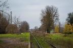 D29-34 km. 36,6 Ostrów Mazowiecka Miasto -- Przystanek Ostrów Mazowiecka Miasto na km. 36,6. Widok na peron w stronę stacji Ostrów Maz. Ostatni pociąg pasażerski odjechał stąd w roku 1993.