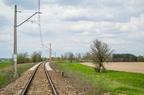 Łuk za stacją Pasieki km. 50,6 -- Wyremontowany tor w 2015 roku w kierunku Ostrołęki na kilometrze 50,6 linii Tłuszcz - Ostrołęka. Prędkość szlakowa 80km/h.