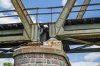 Przęsła mostu kolejowego w Wyszkowie -- Różnica w sposobie zawieszeniu przęseł mostu kolejowego w Wyszkowie, będąca efektem odbudowywania zniszczonego mostu po wojnie.