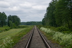 Szlak Sokoły - Łapy -- Szlak kolejowy nieużywanej linii nr 36 Ostrołęka - Łapy. Widok w kierunku Ostrołęki. Widoczne świeżo smarowane śruby mocujące.