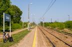 Stacja Dalekie -- Perony st. Dalekie w kierunku Ostrołęki. Tor główny przygotowywany do zaplanowanego remontu.